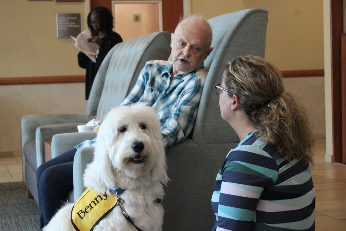 Hospital dog therapy volunteer helps brighten lives